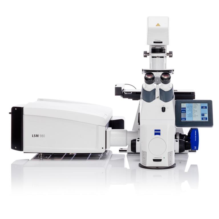 lsm-980-confocal-microscope